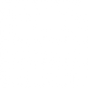 Rubicon Recruitment Group